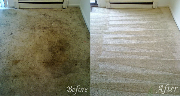 carpet-cleaning-before-and-after-chicago-il-cornelia-carpet-cleaning.jpg